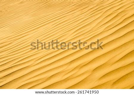 sand texture in Gold desert - stock photo