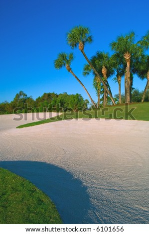 sand trap and cluster of palm trees on golf course - stock photo