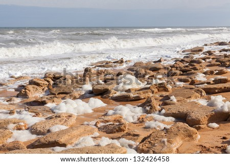 Sandstone beach covered with sea foam in Florida. - stock photo