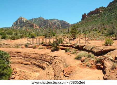sandstone rock face and green forest in Sedona, Arizona
