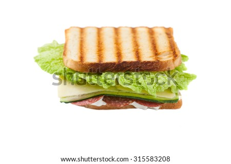 sandwich on a white background - stock photo