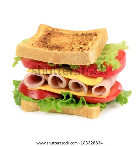 Sandwich toast with tomato and cheese. Isolated on a white background.