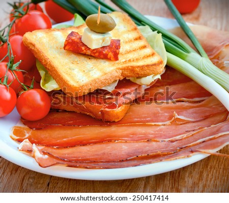 Sandwich with prosciutto and prosciutto on plate with cherry potatoes and onio - stock photo