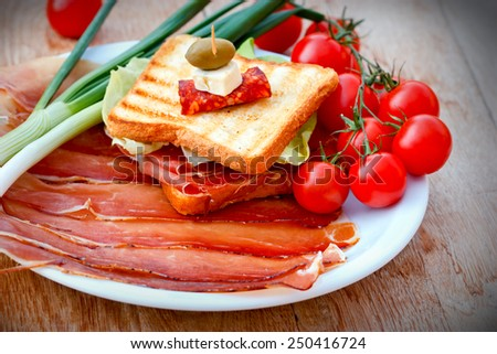 Sandwich with prosciutto, onion and cherry tomatoes - stock photo