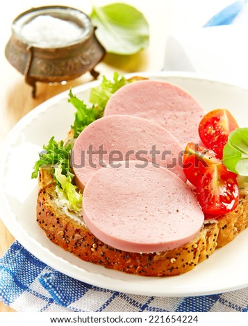 sandwich with sliced sausage on a white plate - stock photo