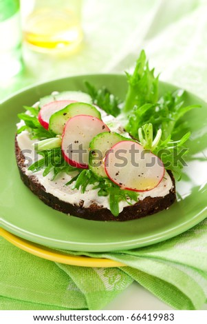 sandwich with soft cheese,radish and cucumber on the plate - stock photo