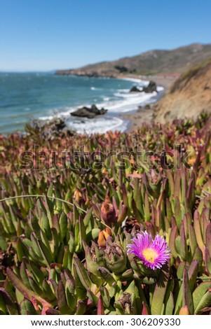 Sandy and rocky beach on the west coast of California USA - stock photo