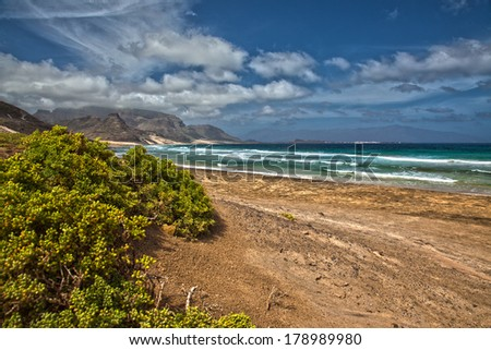 Sandy beach and ocean waves on a deserted tropical beach with green vegetation under a dramatic cloudy blue sky - stock photo