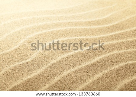 Sandy beach background. Sand close up view. Focus on center - stock photo