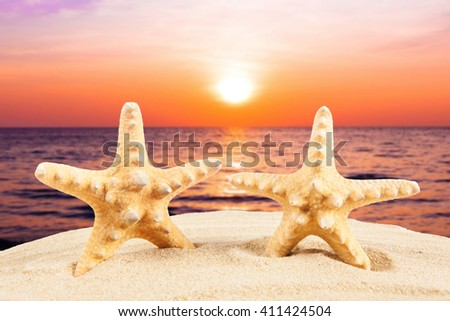 sandy beach.  Starfish on the Beach.  Summer Time - stock photo