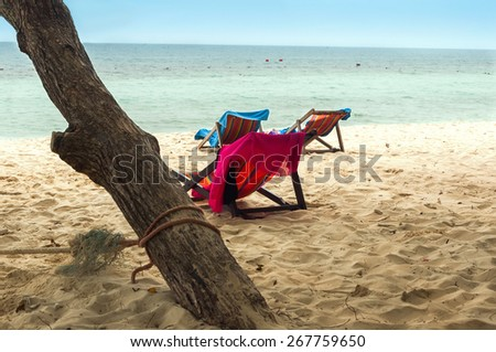 Sandy beach with deckchairs standing under a tree - stock photo