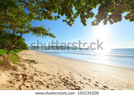 Sandy beach with footprints clear blue sky and green trees - stock photo