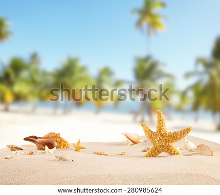 Sandy beach with seashells, blur azure water and palm trees on background. - stock photo