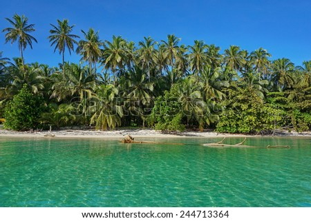 Sandy Caribbean shore with lush tropical vegetation, viewed from the sea - stock photo