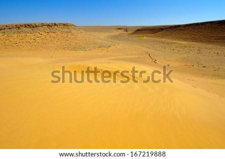 Sandy desert under blue sky, southern Negev, Israel  - stock photo