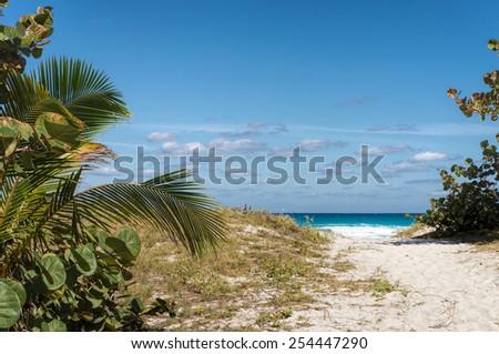 Sandy path to the beach - Varadero, Cuba - stock photo