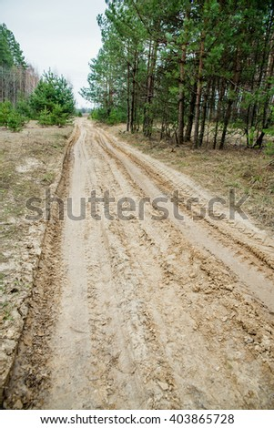 sandy road through the natural forest