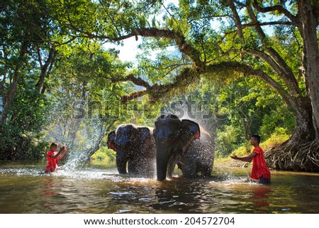 SANGKHLABURI , KANJANABURI, THAILAND-MARCH 23 : An unidentified man shows how to bathe an elephant in a river show in Sangkhlaburi, Kanjanaburi, Thailand on MARCH 23, 2013 - stock photo