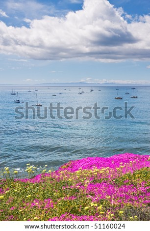 Santa Barbara's offshore anchorage area with purple ice plant in the foreground. - stock photo