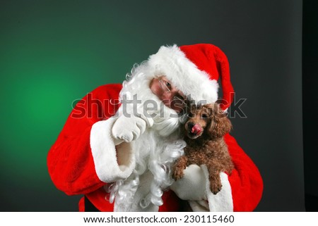 Santa Claus dressed in his Trademark Red Velvet Suit, holds a Small Brown Poodle Dog giving it love and treats for Christmas. Santa Claus loves all animals and especially small dogs. Merry Christmas - stock photo