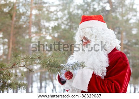 Santa Claus hanging Christmas decorations on a pine tree - stock photo