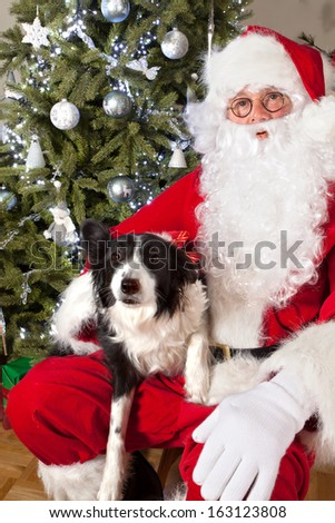 Santa claus posing with the family pet in front of the christmas tree - stock photo
