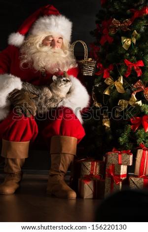 Santa Claus sitting near Christmas tree and embracing his cat. Santa at home  - stock photo