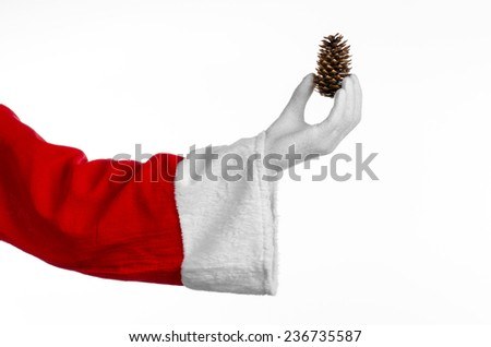 Santa Claus theme: Santa holding a fir cone in his hand on a white background