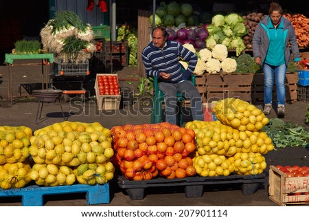 SANTIAGO, CHILE - JULY 24, 2014: Fresh fruit and vegetables for sale in the historic Central Market (La Vega) in Santiago, capital of Chile