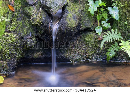 SAO PAULO, SP, BRAZIL  Natural source of crystal clear water - stock photo