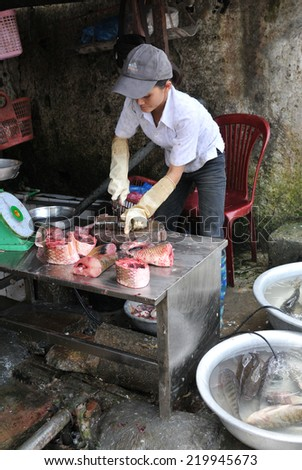 SAPA, VIETNAM - AUGUST 10: Vietnamese woman working as a fish butcher in a an open  market slicing  and selling fish on August 10 2010 in Sapa city, Vietnam, ASIA