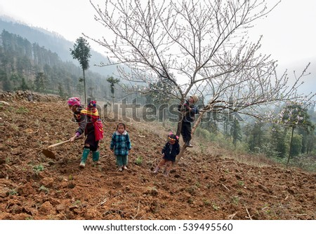 SAPA, VIETNAM, February 16, 2016 women, and children, gardening, in the morning, the high mountains of Sa Pa, Vietnam, in the spring