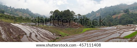 SAPA. VIETNAM, May 19, 2016 terraced landscape, highland Sapa, Vietnam, rice cultivation season