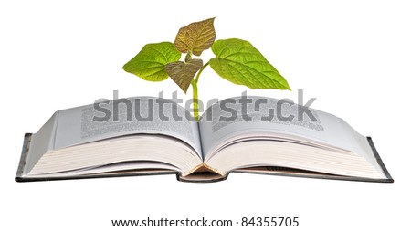 sapling growing from open book