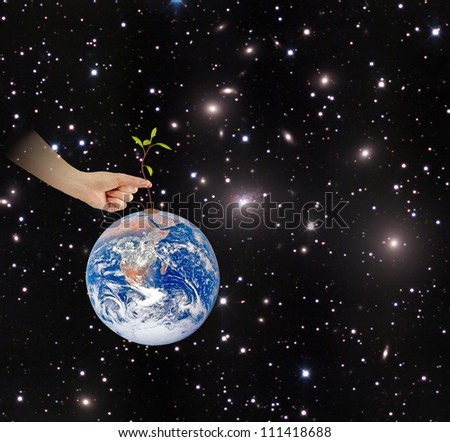 Sapling on Earth as a symbol of conservation.Elements of this image furnished by NASA - stock photo