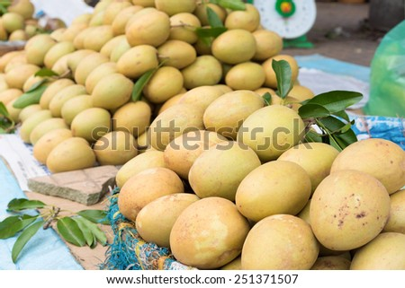 Sapodilla, tropical fruit displayed at Vinh Long fruit market, Mekong delta. The majority of Vietnam's fruits come from the many orchards of the Mekong Delta