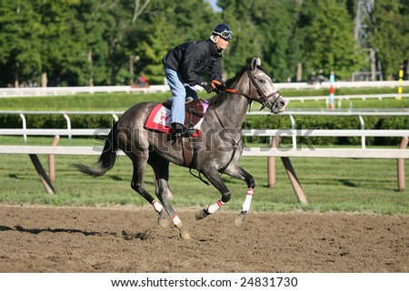 SARATOGA SPRINGS - AUGUST 18: Jockey Calvin Borel works a horse on the Saratoga Main Track on August 18, 2005 in Saratoga Springs, NY