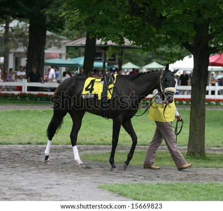 "SARATOGA SPRINGS - August 2: Morakami is walked in the Paddock by her Groom before the running of ""The Flanders"" August 2, 2008 in Saratoga Springs, NY."
