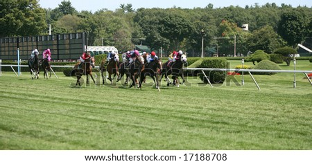 SARATOGA SPRINGS - August 23:  The Fields heads for the Finish Line in the Fourth Race on Travers Day August 23, 2008 in Saratoga Springs, NY.