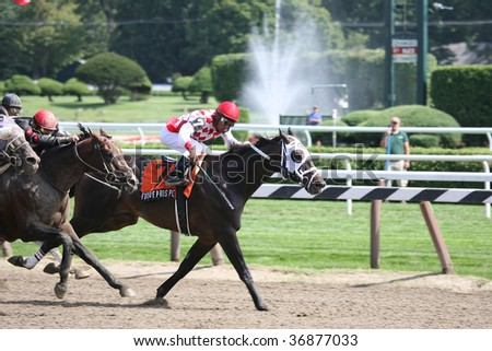 "SARATOGA SPRINGS, NY- AUG 28: ""Future Prospect"" leads in the stretch of the ""Funny Cide Stakes"" at Saratoga Race Track, August 28, 2009 in Saratoga Springs, NY."