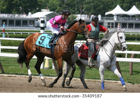 "SARATOGA SPRINGS, NY- AUGUST 15: ""Callide Valley"" with Jullien Leparoux aboard in the post parade for the second race at Saratoga Race Track, August 15, 2009 in Saratoga Springs, NY."