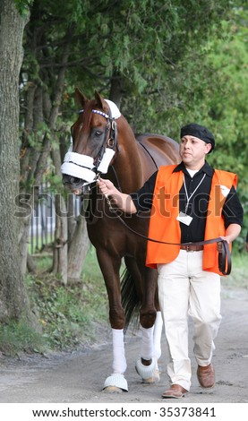"SARATOGA SPRINGS, NY- AUGUST 8: ""Commentator"" leaves the detention barn for the paddock before The Whitney Stakes at Saratoga Race Track, August 8, 2009 in Saratoga Springs, NY. - stock photo"