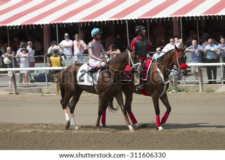 SARATOGA SPRINGS, NY - August 29, 2015: #2 Conquest Nitro with S Bridgmohan in  post parade for 4th race on Travers Day at Historic Saratoga Race Course on August 29, 2015 Saratoga Springs, New York - stock photo