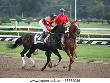 "SARATOGA SPRINGS, NY- AUGUST 23: ""Dickie B"" with Jose Lezcano aboard in the post parade for the 5th race at Saratoga Race Track, August 23, 2009 in Saratoga Springs, NY."