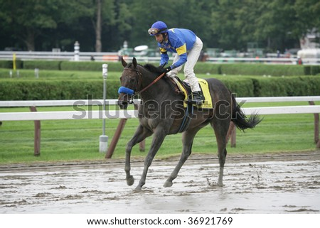 "SARATOGA SPRINGS, NY- AUGUST 29: ""Indian Blessing"" with John Velazquez aboard returns to be unsaddled after the Ballerina Stakes at Saratoga Race Track, August 29, 2009 in Saratoga Springs, NY."