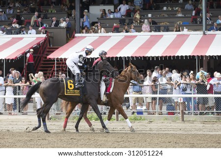 SARATOGA SPRINGS, NY - August 29, 2015: Limousine Liberal in the Post Parade for the King's Bishop Stakes on Travers Day at Historic Saratoga Race Course on August 29, 2015 Saratoga Springs, New York - stock photo