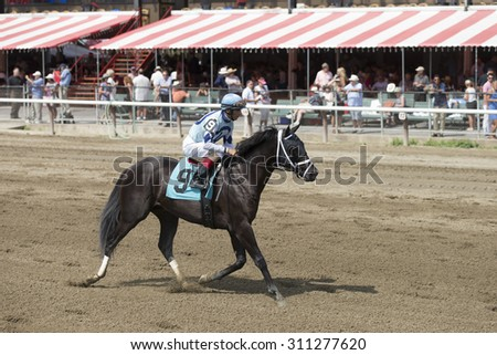 SARATOGA SPRINGS, NY - August 29, 2015: Number 9 Ready Dancer ridden by John Velazquez after the 2nd race on Travers Day at Historic Saratoga Race Course on August 29, 2015 Saratoga Springs, New York - stock photo