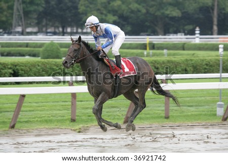 "SARATOGA SPRINGS, NY- AUGUST 29: ""Rutherienne"" with Alan Garcia aboard returns to be unsaddled after the Balston Spa Stakes at Saratoga Race Track, August 29, 2009 in Saratoga Springs, NY."