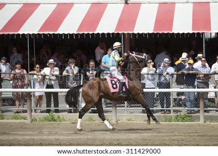 SARATOGA SPRINGS, NY - August 29, 2015: #7 Sail Ahoy ridden by Joel Rosario before the 2nd race on Travers Day at Historic Saratoga Race Course on August 29, 2015 Saratoga Springs, New York - stock photo