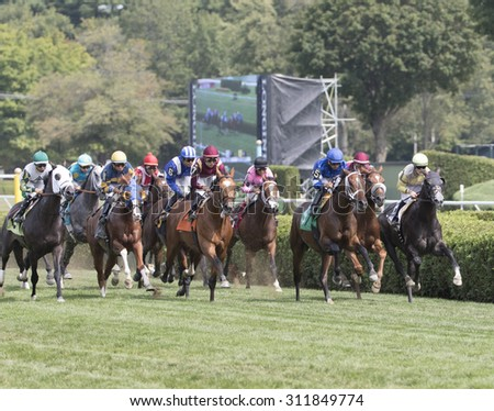 SARATOGA SPRINGS, NY - August 29, 2015: The field heads for home in the 5th race on Travers Day at Historic Saratoga Race Course on August 29, 2015 Saratoga Springs, New York - stock photo